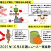 筋トレにマッサージと果物が効果的・CO2対策で人口デンプン生成、キノコの活用等等々【10月4日週気になるニュース 】