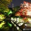 路地裏紅葉2016~「東寺ライトアップ」