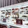 さっぽろ雪まつり「魚氷」どうなる? 北九州の件が影響