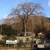清様のお城しりとりシリーズ 第3弾 浄福寺城