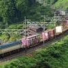 第1311列車 「 俯瞰撮影で日常の列車を狙う 」