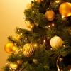 ドイツのクリスマス前のアドベント(Advent)て何??どんなことをする日なの?