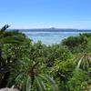33歳の7月 沖縄旅行記4日目①~ひたすら、美ら海水族館