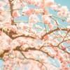 3月の星からのMessage牡羊座~乙女座