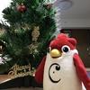 英会話ロボット★チャーピーの季節の英単語クイズ「クリスマスに絶対に覚えたい英単語!!」
