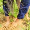 【お山】植樹の報告