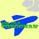 ana_mile_totochanのブログ
