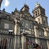 メキシコシティ 歴史地区観光(1/2)、メトロポリタン大聖堂 、国立宮殿、そして工事中のソカロ広場