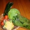 おみやげの野菜