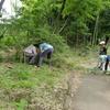 夏の庭づくり講座「夏の木々の剪定」を開催しました。