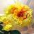 黄色のお花 〜刺繍〜