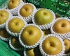 梨の販売を始めました