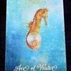 今日のカード Ace of Water
