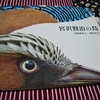 絵本『宮沢賢治の鳥』がとても面白かったのです
