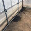 ビニール温室内の除草