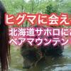 北海道新得町 サホロ ベアマウンテンでヒグマに会ってきました