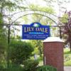 アメリカでスピリチュアル・リーディングをするならこの街 TOP 5 -Lily Dale-