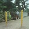 ペットントン聖地巡礼(ロケ地探訪)- 武蔵関(晩夏)
