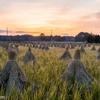 田舎の風景 その2