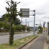 宛の木(生駒市)