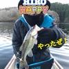 12/6三河湖釣り情報🐟と三河湖日記🗣🌼☘️♪