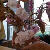 〈ひかり〉押し花作り✿