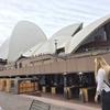 ド弾丸シドニー旅行@シドニーオペラハウス・サーキュラーキー~セントラル駅~グリーブマーケット~シドニー大学へ! シドニーの土曜日満喫散歩をご紹介