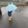 お外遊び好き親子の雨の日曜日