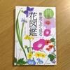 散歩のお供に超おすすめ!雑草の花の名前がわかる本。