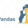 pandasでDataFrameを使う方法