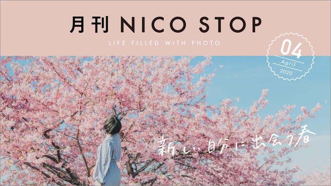 月刊NICO STOP 4月号 | 新しい自分に出会う春