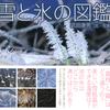 冬景色の中へ、探しに行きたくなる不思議な現象の数々。 『雪と氷の図鑑』