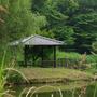 古河公方公園 その2
