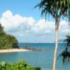 世界遺産になる前に「奄美・沖縄」について日本人が知るべきこと