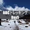 【ネパール】ABCトレッキング Day5