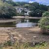 大池(和歌山県海南)