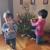 【育児】 子供達と一緒にクリスマスツリーの飾りつけをしました【海外生活】