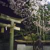 車折神社で早咲きの夜桜を愛でる@2020