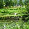 八ツ峰養魚(新潟県魚沼)