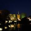 東寺 桜ライトアップ