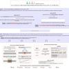 タンパク質のホモリピートを分析するwebサーバー dAPE