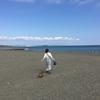 ハナさん、初めての海