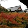 紅葉の東福寺を散策 京都御朱印巡り