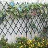 まだ続く夏野菜の収穫と青系バラ