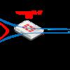 【FortiGate】非対称ルーティングの設定