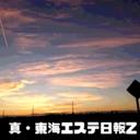 真・東海エステ日報Z