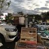バンコクの若者に大人気って噂のJJ GREENナイトマーケットに行ってみた!!