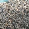 堆肥化が進んだモミガラはよく撹拌し、水分補給は適度に行いましょう