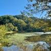 萩アクティビティパークの野池(仮称)(山口県萩)