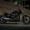 バイク:2019 Harley Davidson Softail「FXDR 114」